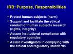 irb purpose responsibilities