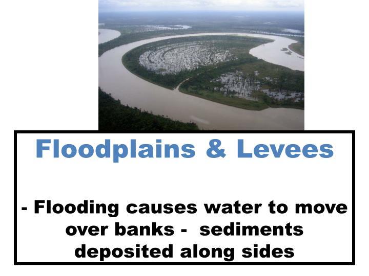 Floodplains & Levees
