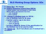 blg working group options sox