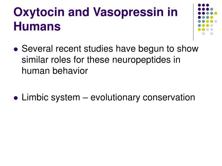 Oxytocin and Vasopressin in Humans