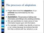 the processes of adaptation