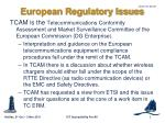 european regulatory issues