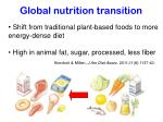 global nutrition transition