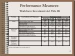 performance measures workforce investment act title ib