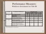 performance measures workforce investment act title ib1