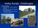 delta ponds challenges