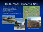 delta ponds opportunities