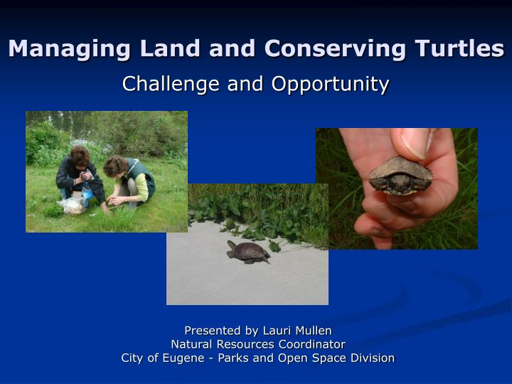 managing land and conserving turtles n.