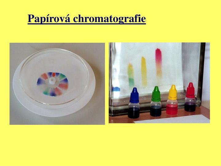 Papírová chromatografie