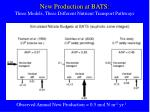 new production at bats three models three different nutrient transport pathways
