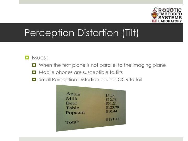 Perception Distortion (Tilt)