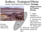 sudbury ecological effects acute point source air pollution principle