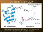 acyl carrier protein acp