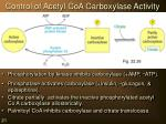 control of acetyl coa carboxylase activity