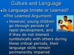 culture and language4
