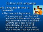 culture and language6
