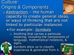 culture origins components