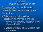 culture origins components1