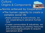 culture origins components2