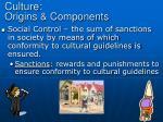 culture origins components5