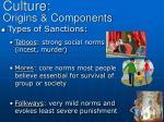 culture origins components6
