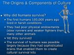 the origins components of culture