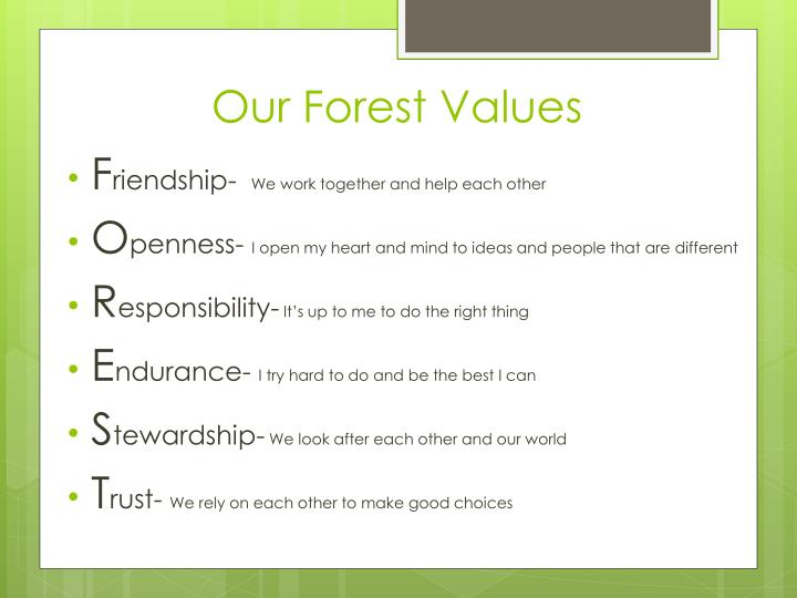 Our Forest Values