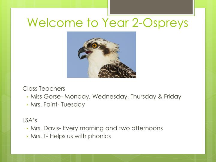 Welcome to year 2 ospreys