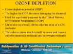 ozone depletion2