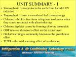 unit summary 1