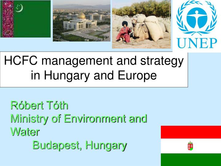 hcfc management and strategy in hungary and europe n.