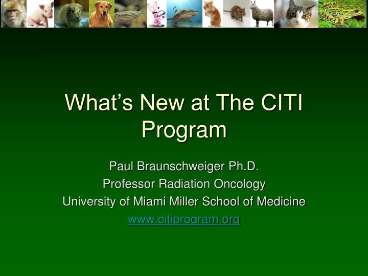 what s new at the citi program n.