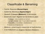 classificatie benaming