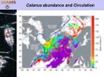 calanus abundance and circulation