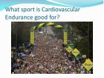what sport is cardiovascular endurance good for