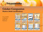 cricket companion windows mobile and blackberry
