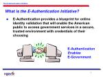 what is the e authentication initiative