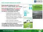 green growth indicators in practice