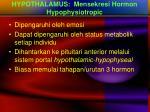 hypothalamus mensekresi hormon hypophysiotropic
