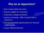 why be an apprentice