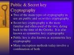 public secret key cryptography