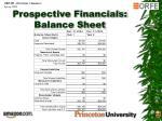 prospective financials balance sheet