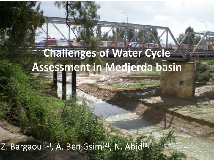 challenges of water cycle assessment in medjerda basin n.