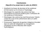 conclusions objectifs d un projet dans le cadre de afwcci