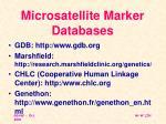 microsatellite marker databases