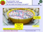 the primordial soup of quarks and gluons can we make and study it on earth