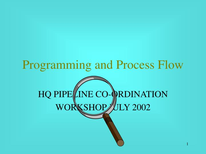 programming and process flow n.
