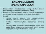 encapsulation pengkapsulan