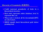 hierarchy of granularity