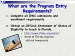 what are the program entry requirements
